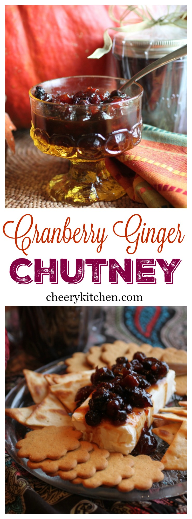 Cranberry Ginger Chutney