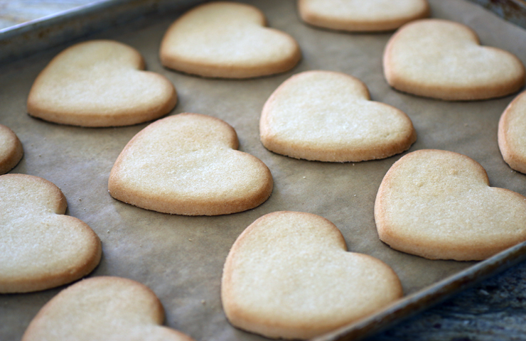 easy sugar cookie recipes without flour easy sugar free sugar cookie ...