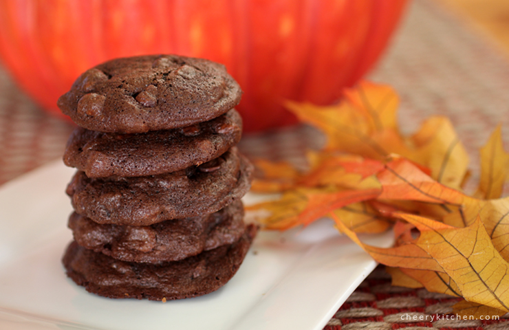 Ooey-gooey Double Chocolate Cookies